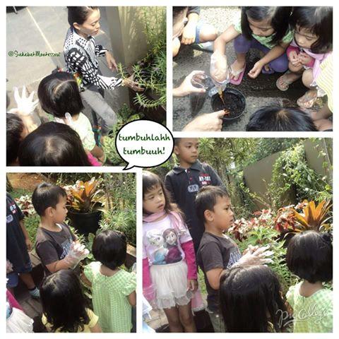 Cinta terjadi di mana saja, pertemuan anak-anak dengan tumbuh-tumbuhan dapat menciptakan rasa peduli...